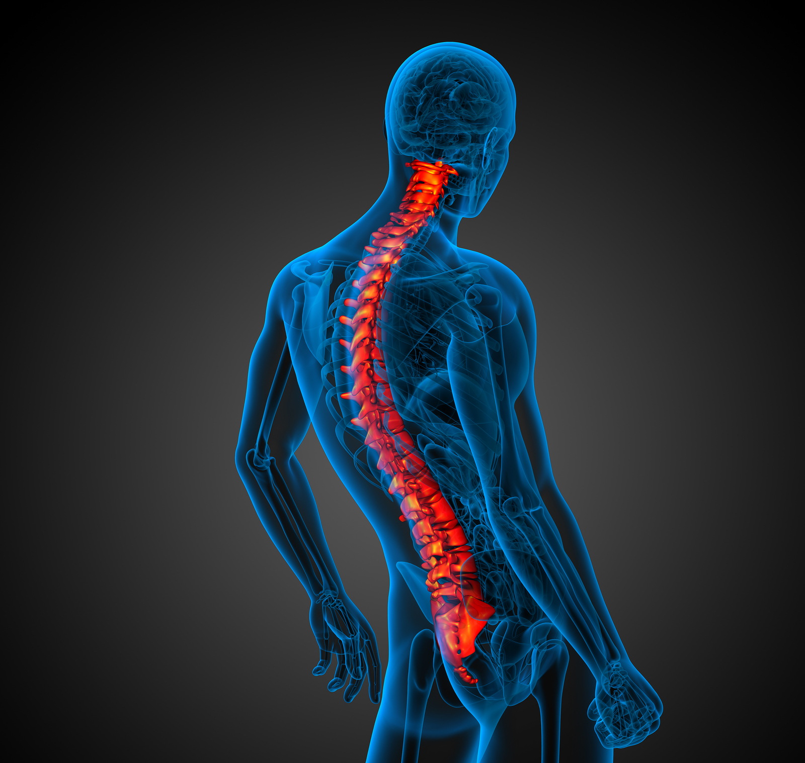 Back Pain In San Diego Ca Your Desk Job May Be To Blame